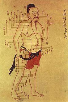 Acupuncture Treats