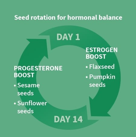 Balance Estrogen and Progesterone with Seed Cycling